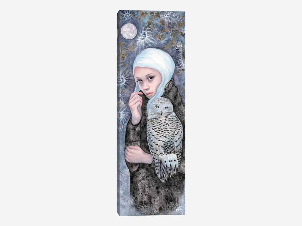 Nightowl by Anne-Sophie Cournoyer 1-piece Canvas Wall Art