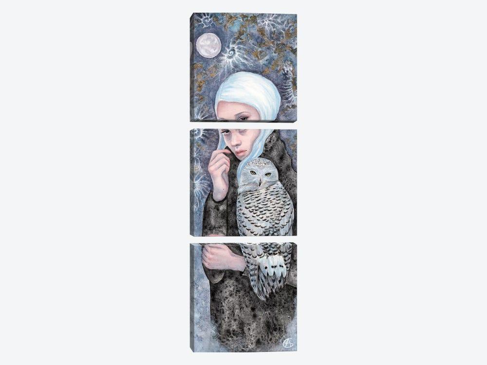 Nightowl by Anne-Sophie Cournoyer 3-piece Canvas Artwork