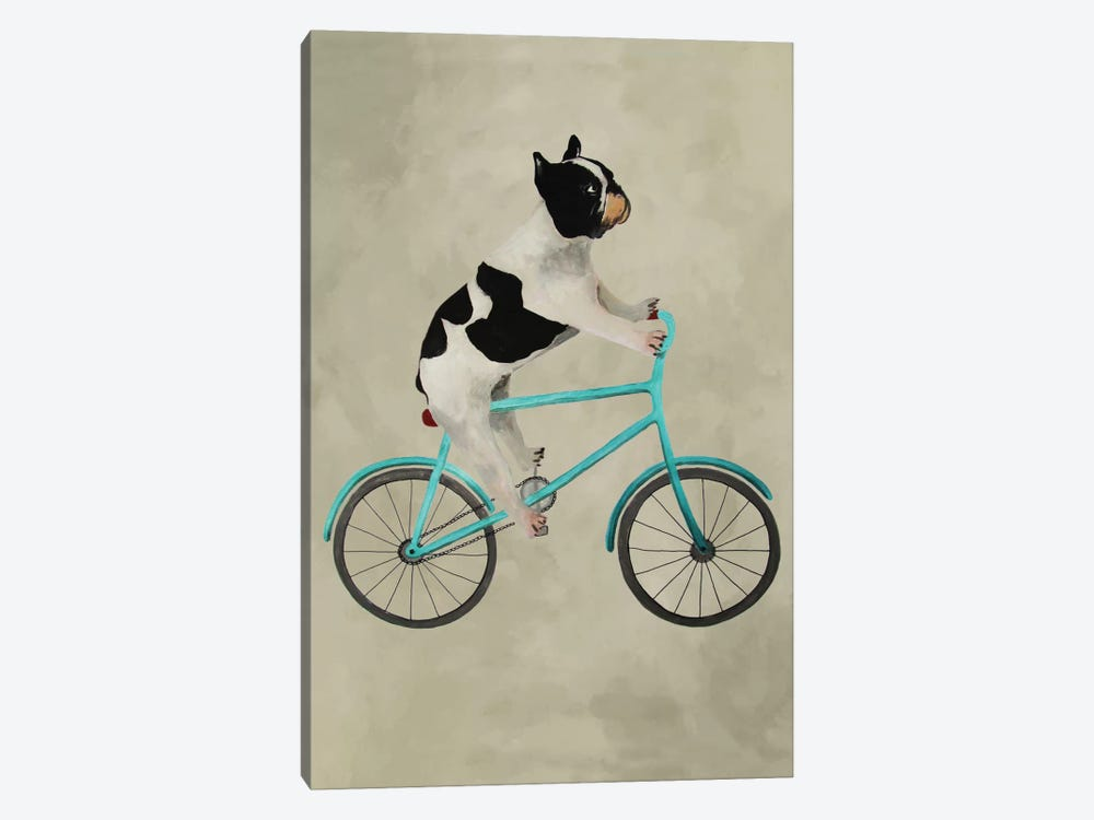 Bulldog On Bicycle by Coco de Paris 1-piece Art Print