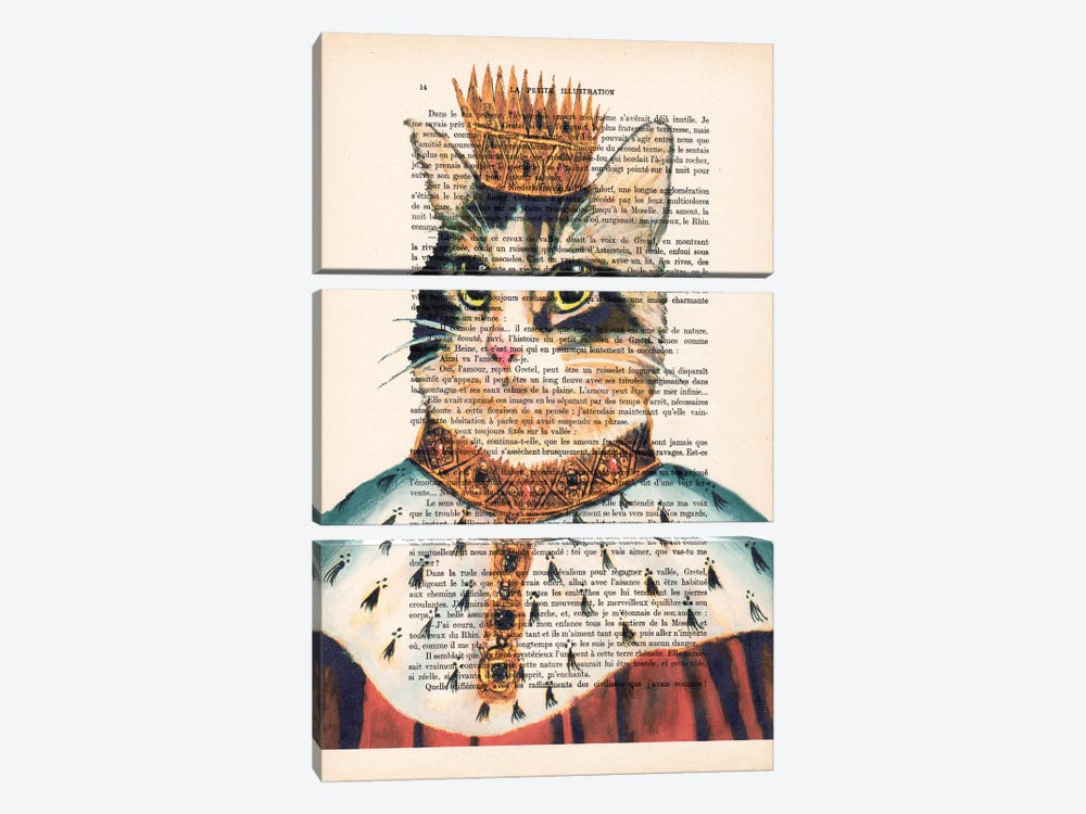 King Cat by Coco de Paris 3-piece Canvas Art Print