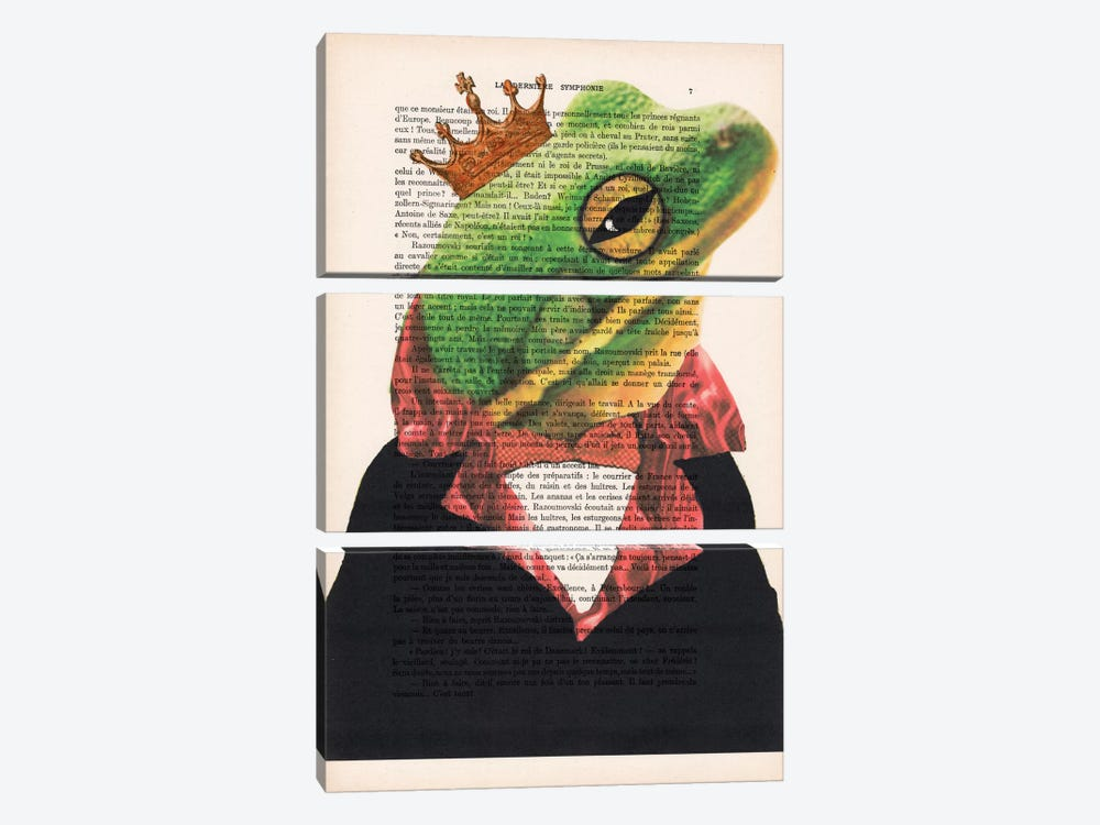 King Frog by Coco de Paris 3-piece Canvas Artwork