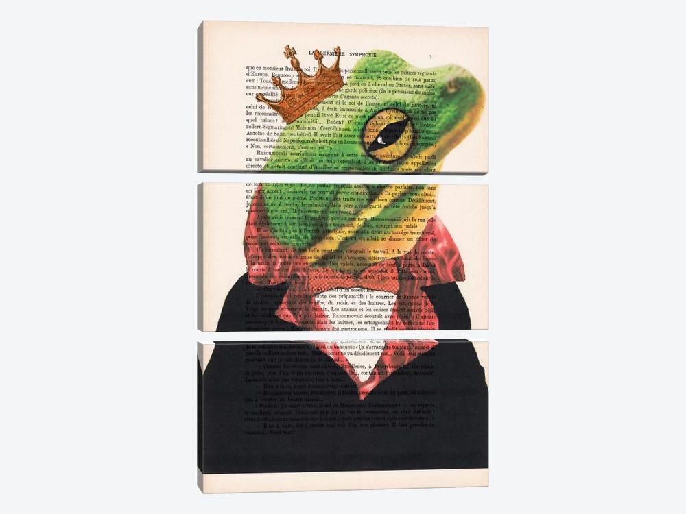 King Frog by Coco de Paris 3-piece Canvas Artwork