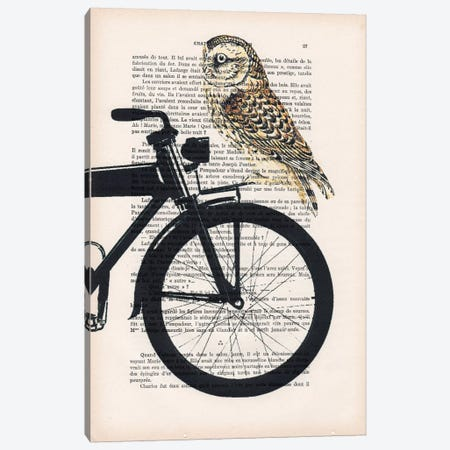Owl On Bicycle Canvas Print #COC120} by Coco de Paris Art Print