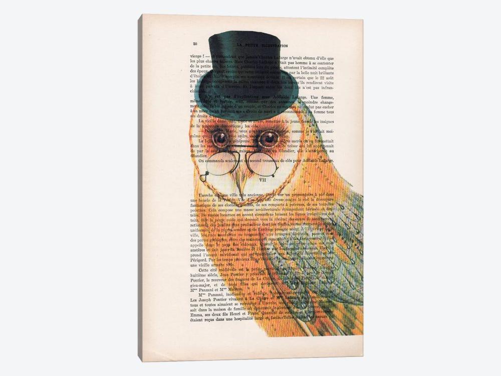 Owl Wit Hat by Coco de Paris 1-piece Art Print
