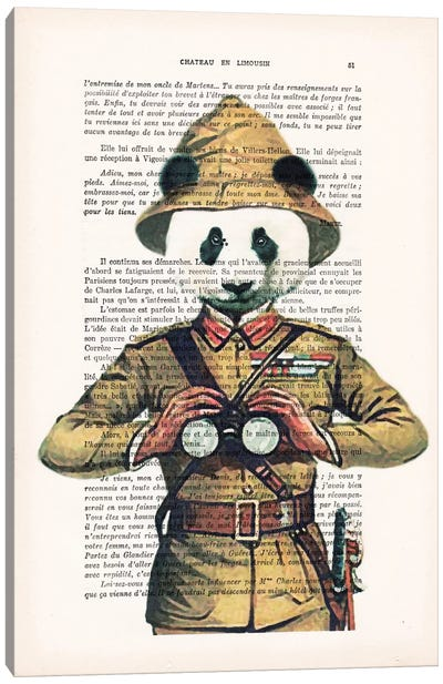 Panda Explorer Canvas Art Print