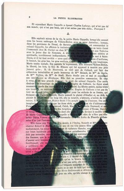 Vintage Paper Series: Panda With Bubblegum Canvas Print #COC123