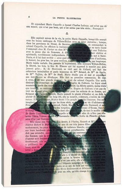 Panda With Bubblegum Canvas Art Print
