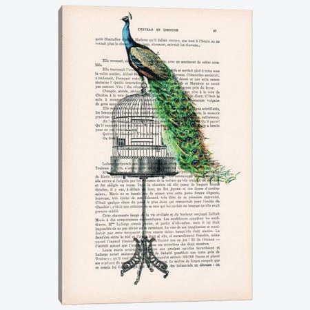 Peacock On Birdcage Canvas Print #COC125} by Coco de Paris Canvas Art