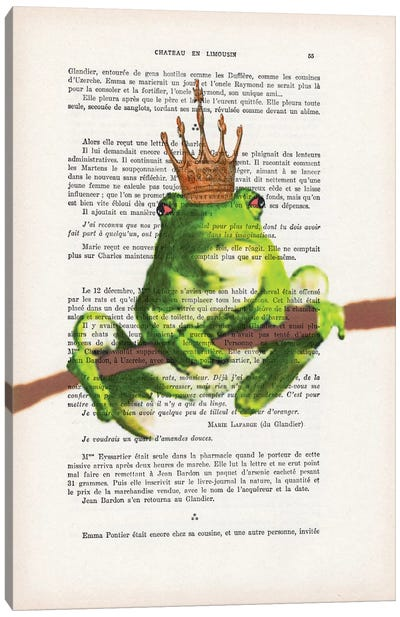 Prince Frog Canvas Art Print