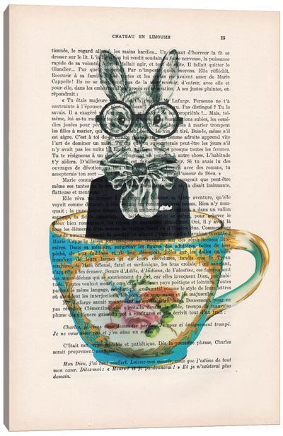 Vintage Paper Series: Rabbit In A Cup Canvas Print #COC129