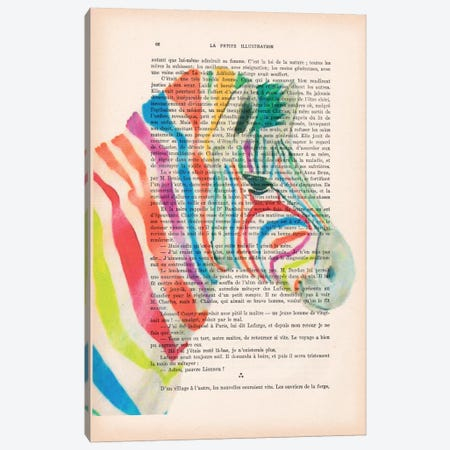 Rainbow Zebra I Canvas Print #COC131} by Coco de paris Canvas Artwork