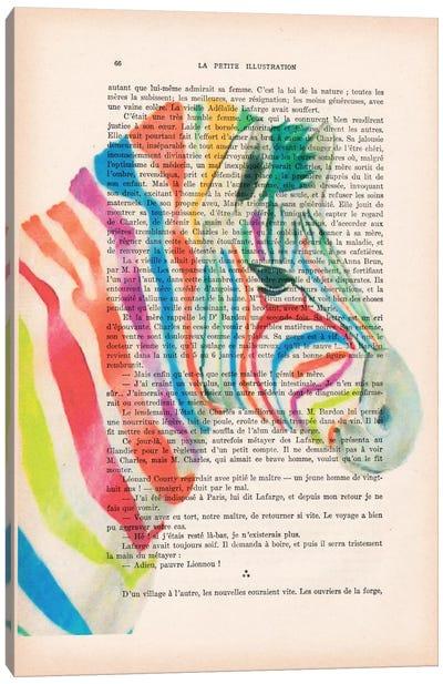 Vintage Paper Series: Rainbow Zebra Canvas Print #COC131