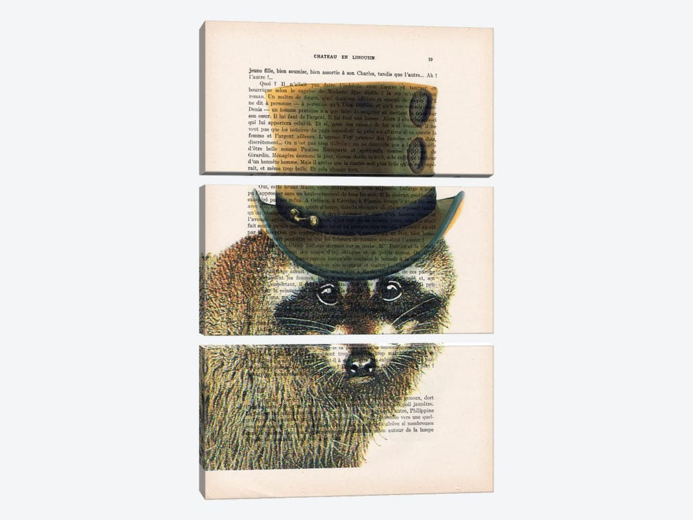 Steampunk Racoon by Coco de Paris 3-piece Canvas Wall Art