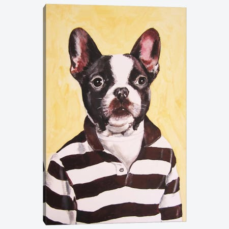 Bulldog With Stripy Shirt Canvas Print #COC13} by Coco de paris Art Print