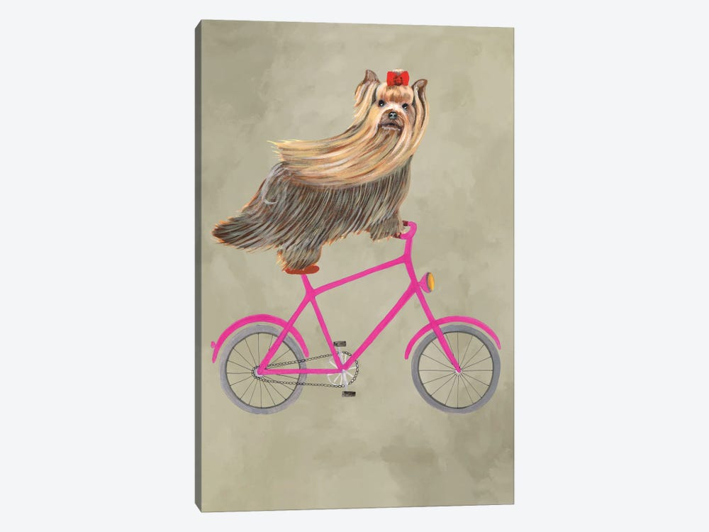 Yorkshire On Bicycle by Coco de Paris 1-piece Canvas Wall Art