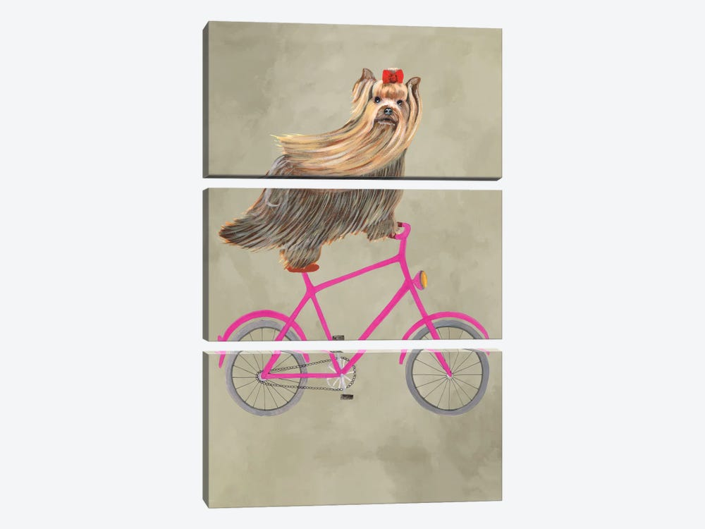 Yorkshire On Bicycle by Coco de Paris 3-piece Canvas Wall Art