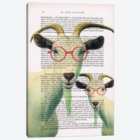 Clever Goats 3-Piece Canvas #COC149} by Coco de Paris Canvas Art Print