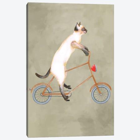 Cat On Bicycle Canvas Print #COC14} by Coco de Paris Canvas Artwork