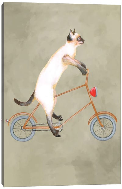 Cat On Bicycle Canvas Art Print