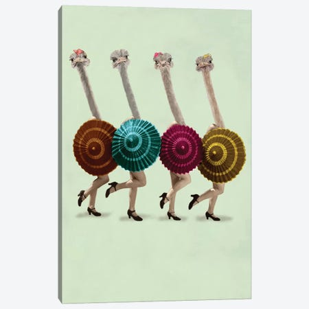 Dancing Ostriches Canvas Print #COC152} by Coco de paris Canvas Wall Art