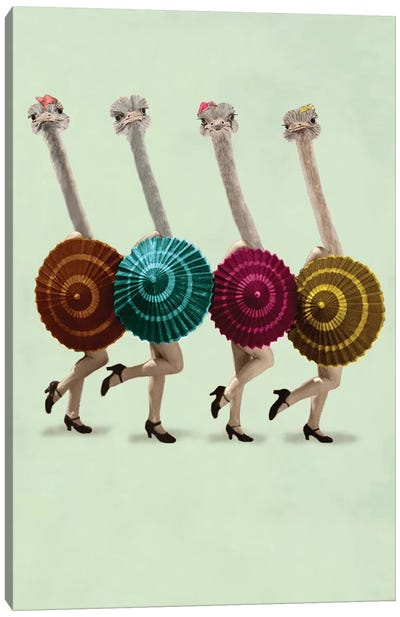 Dancing Ostriches Canvas Art Print