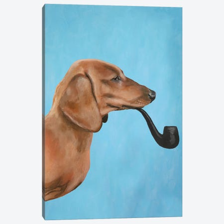 Dachshund Smoking Pipe Canvas Print #COC153} by Coco de paris Canvas Art