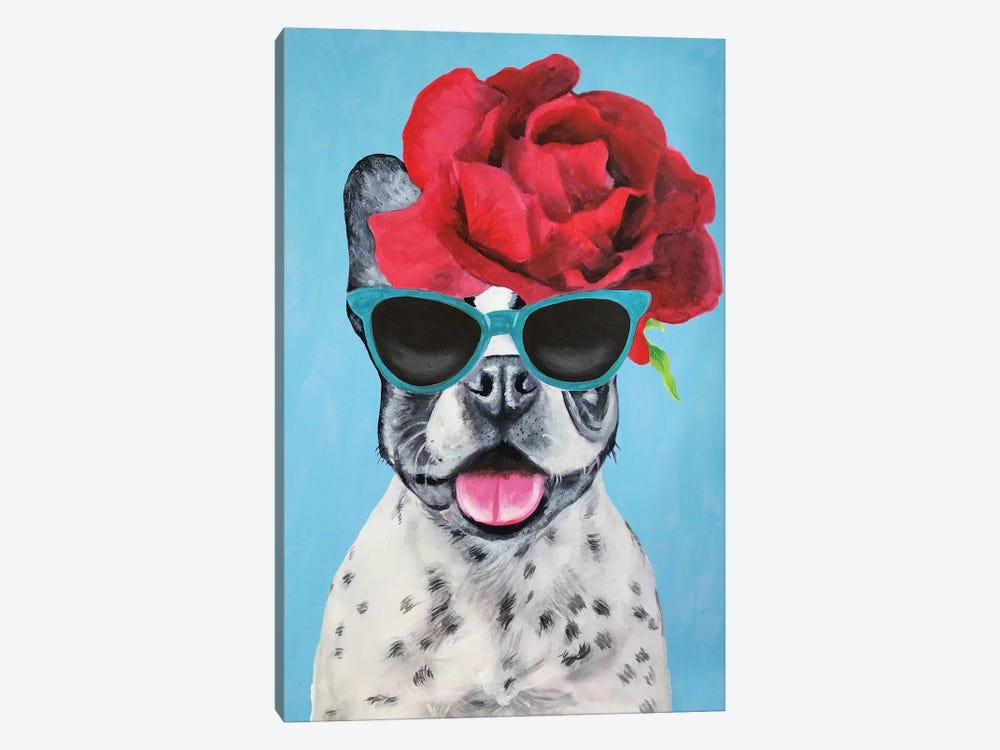 Fashion Bulldog Blue by Coco de Paris 1-piece Canvas Art