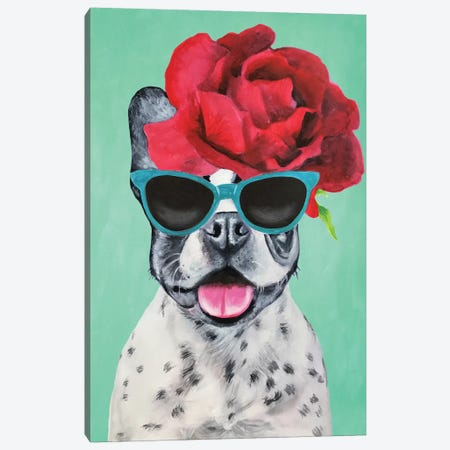 Fashion Bulldog Turquoise Canvas Print #COC157} by Coco de paris Canvas Print