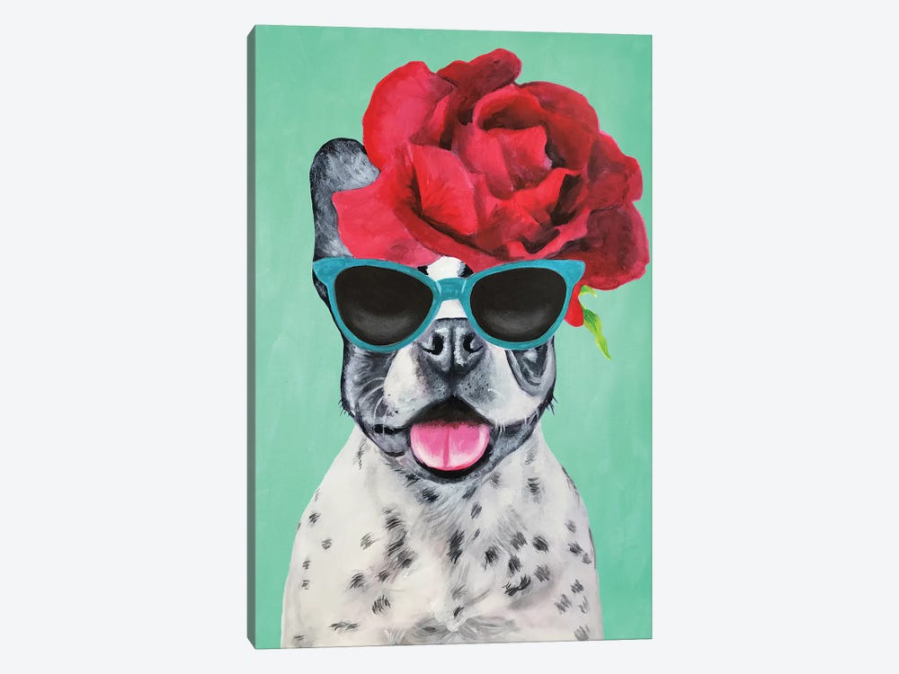 Fashion Bulldog Turquoise by Coco de paris 1-piece Canvas Artwork