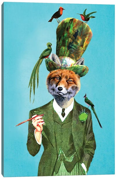 Fox With Hat And Birds Canvas Art Print