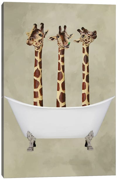 Giraffes In Bathtub Canvas Art Print