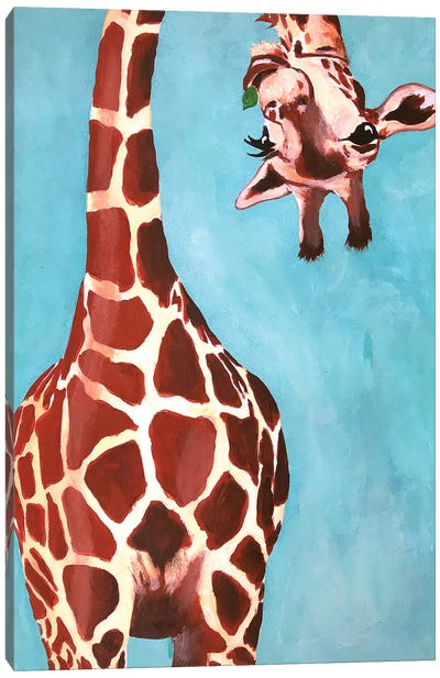 Giraffes With Green Leaf Canvas Art Print