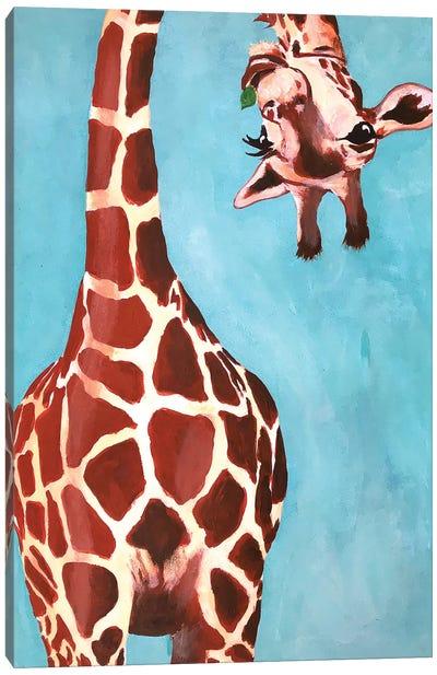 Giraffes With Green Leaf Canvas Art Print