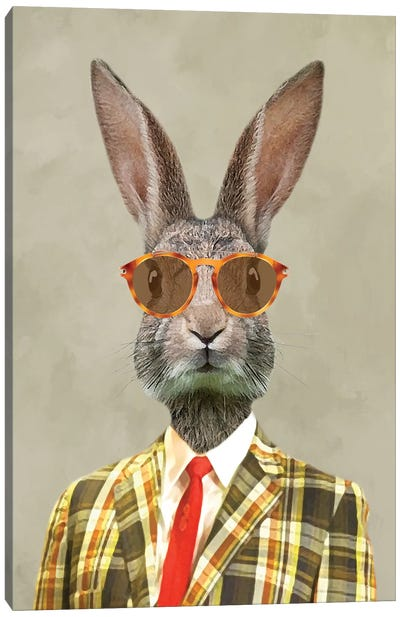 Rabbit Vintage Man I Canvas Art Print