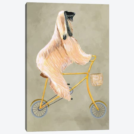 Afghan On Bicycle Canvas Print #COC176} by Coco de Paris Canvas Art Print