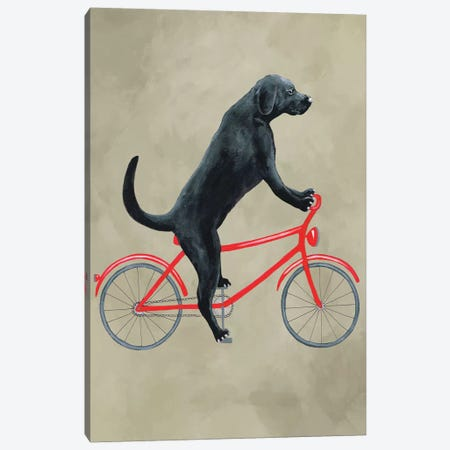 Black Labrador On Bicycle Canvas Print #COC178} by Coco de Paris Canvas Art