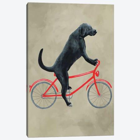 Black Labrador On Bicycle Canvas Print #COC178} by Coco de Paris Canvas Art