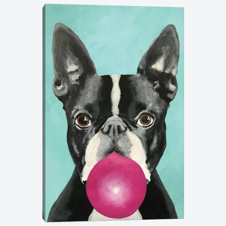 Bubblegum Boston Terrier Canvas Print #COC179} by Coco de Paris Canvas Wall Art