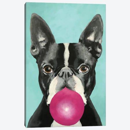 Bubblegum Boston Terrier Canvas Print #COC179} by Coco de Paris Canvas Wall Art