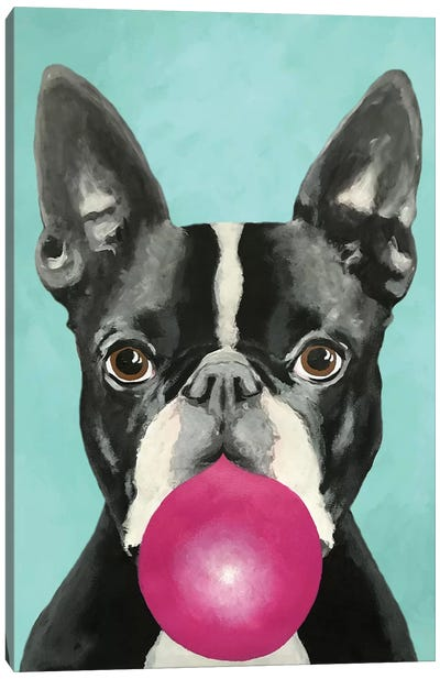 Bubblegum Boston Terrier Canvas Art Print