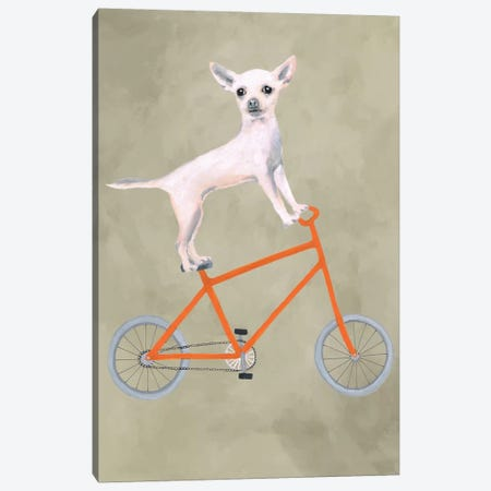 Chihuahua On Bicycle Canvas Print #COC17} by Coco de Paris Canvas Artwork