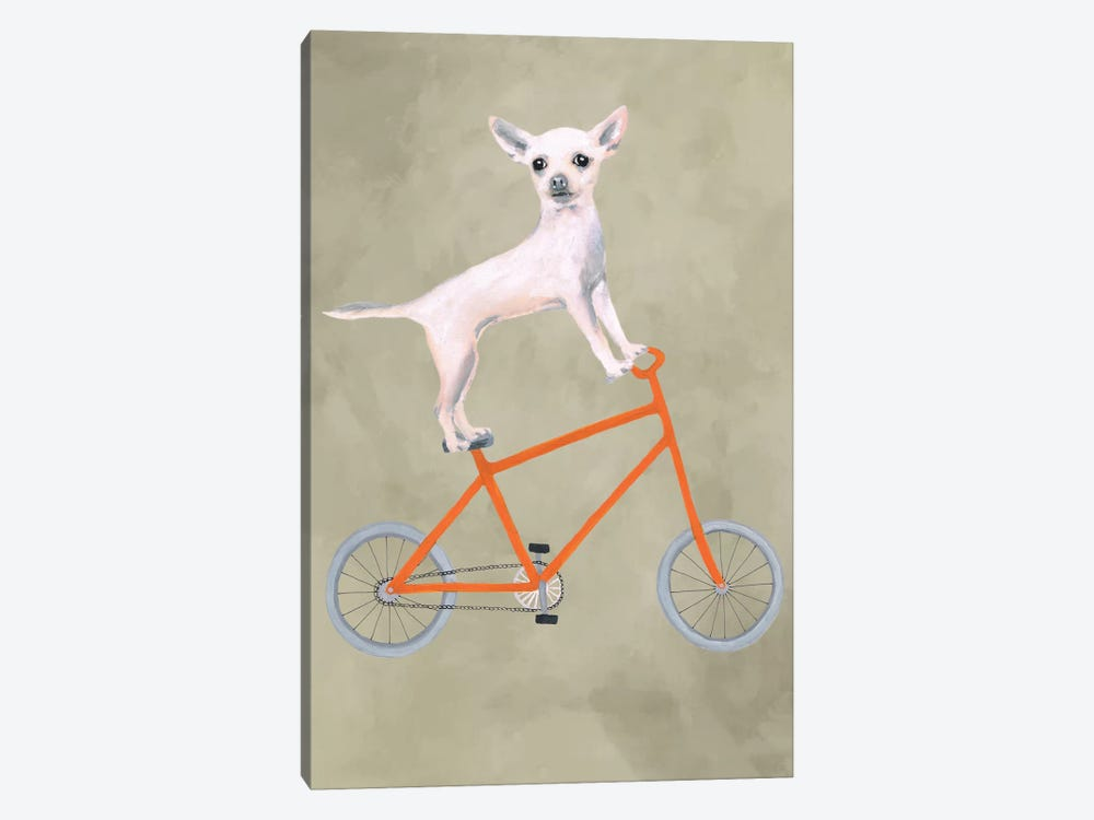 Chihuahua On Bicycle by Coco de Paris 1-piece Canvas Artwork