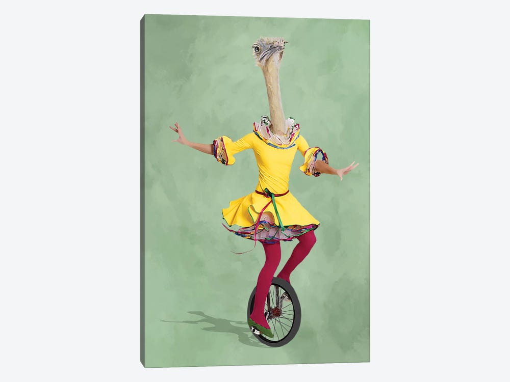 Ostrich Monocycle 1-piece Canvas Print