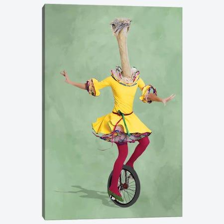 Ostrich Monocycle Canvas Print #COC216} by Coco de Paris Canvas Artwork