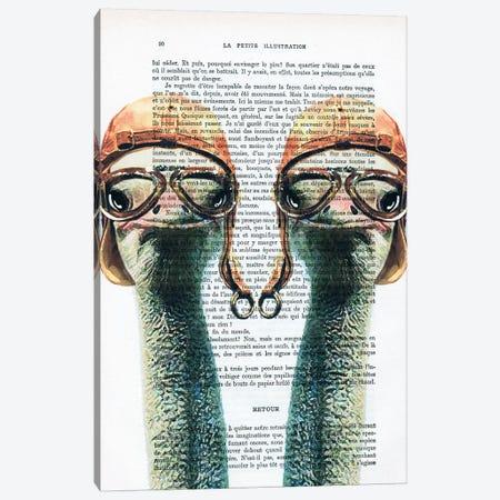 Ostriches Vintage Pilots Canvas Print #COC218} by Coco de Paris Art Print