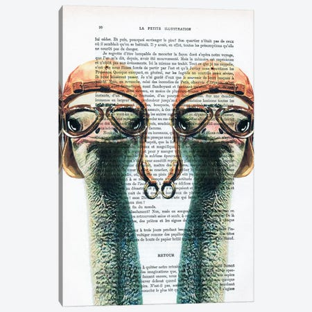 Ostriches Vintage Pilots Canvas Print #COC218} by Coco de Paris Art Print
