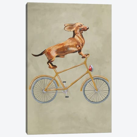 Dachshund On Bicycle I Canvas Print #COC21} by Coco de Paris Canvas Wall Art