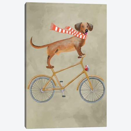 Dachshund On Bicycle II Canvas Print #COC22} by Coco de Paris Canvas Artwork