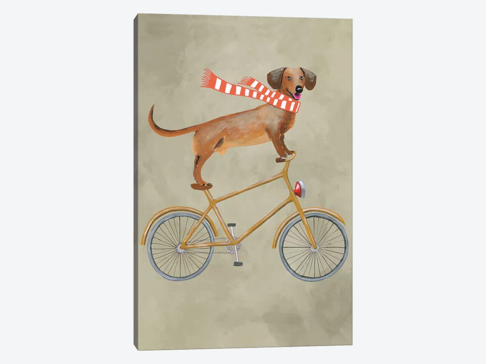 Dachshund On Bicycle II by Coco de Paris 1-piece Canvas Art