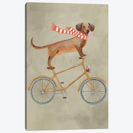 Dachshund On Bicycle II Canvas Print #COC22} by Coco de Paris Canvas Artwork